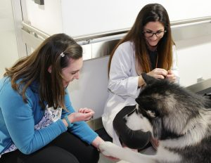 Jessica Napper (left) and Maya Tal, X-Ray Technologists in the MRI area of the JGH, pause to play with Zodiak.